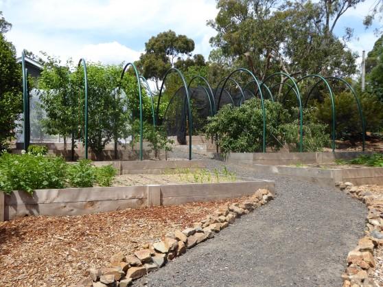 house - lavender park - front garden 1
